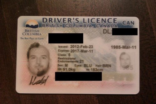 Wacky Driver's License   If you think that's funny, you should see his registration.