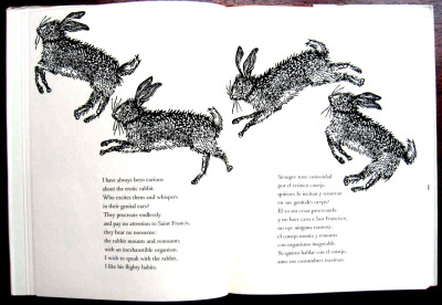 from Pablo Neruda's Bestiary—illustrated by Antonio Frasconi and translated by Elsa Neuberger.  I have always been curious about the erotic rabbit. Who excited them and whispers in their genital ears? They procreate endlessly and pay no attention to Saint Francis, they hear no nonsense: the rabbit mounts and remounts with an inexhaustible organism. I wish to speak with the rabbit, I like his flighty habits.