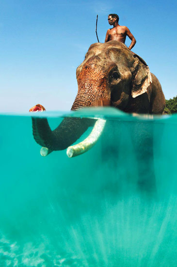 Babar, Me and the Deep Blue Sea | The Andaman Islands, India