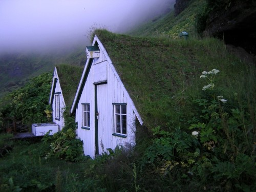 cabinporn:  Sod roof houses in Vik, Iceland. Photo by Gilles Baldet. The birdhouses are my favorite detail.