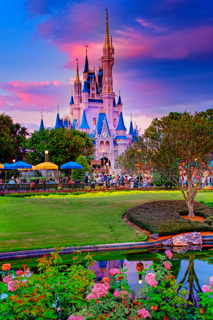 """Magic Hour Magic Kingdom""by Matt Pasant"