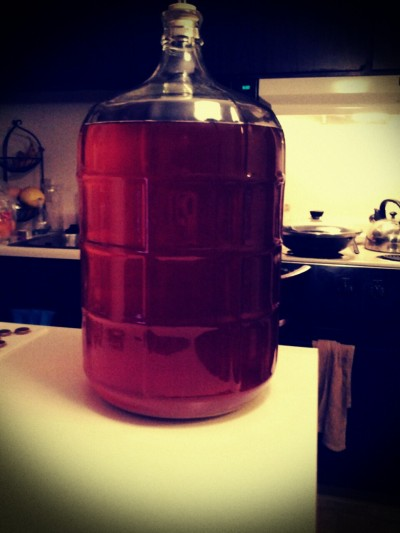 My first home brew!  I just bottled this pale ale and now I wait a couple weeks to enjoy… can't wait!!!