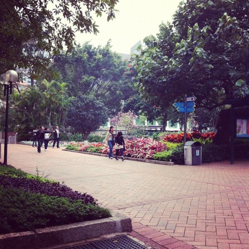 Nature trip (Taken with Instagram at Kowloon Park 九龍公園)