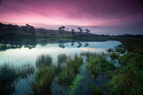 Morning Colours 2 (by PeterYoung1)