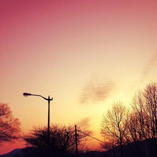 #pink #sky #cloud #clouds #korea #busan #sunset #tree #4s (Taken with instagram)