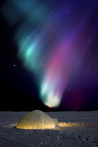 igloo under the mighty northern lights (by blachford photo)