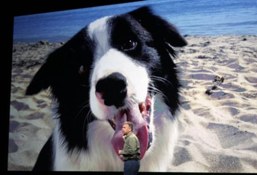 yahoonews:  Favorite iPad photo so far today: Apple's Phil Schiller appearing to get licked by a giant dog while talking about the device's built-in camera. (Photo: Reuters/Robert Galbraith)