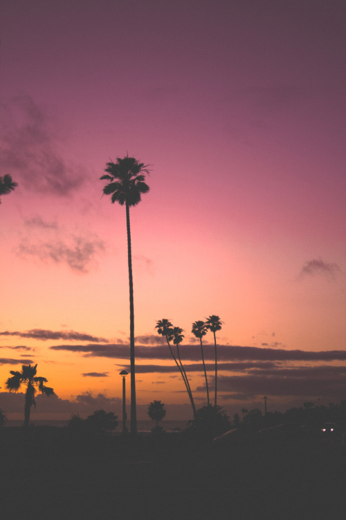 whiskeyblackleather-diamonds:  PINK by Jeremiah Probodanu