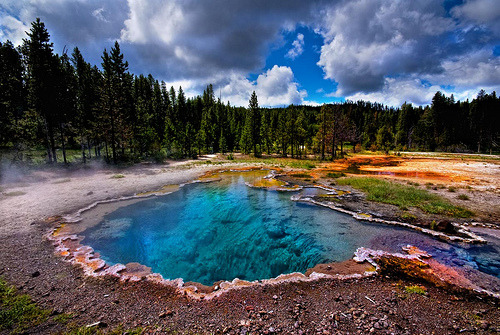 integr4tion:  Yellowstone Thermal Pool- Bill Wight