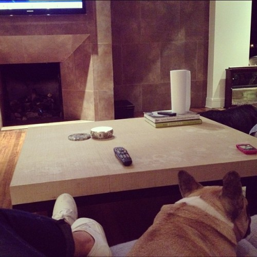 Steve the frenchie and I watching Breaking Dawn 😜 (Taken with instagram)