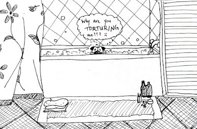 bahhumpug:  How I torture my pug.  Sounds familiar!