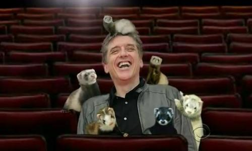 Craig and his ferrets.