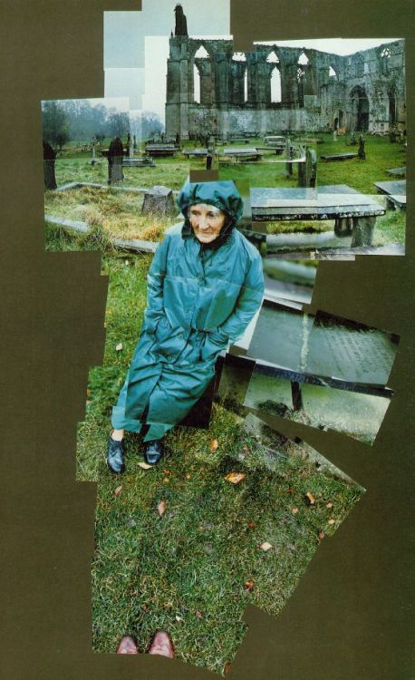 cavetocanvas:  David Hockney, My Mother, Bolton Abbey, Yorkshire, Nov. 82 #4, 1982