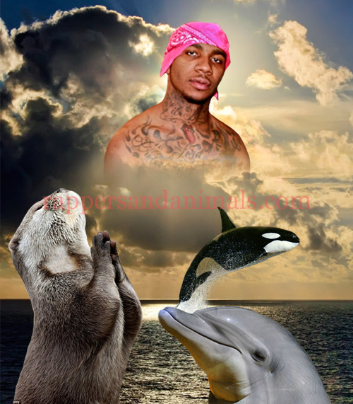 rappersandanimals:  Sea animals praising the based god