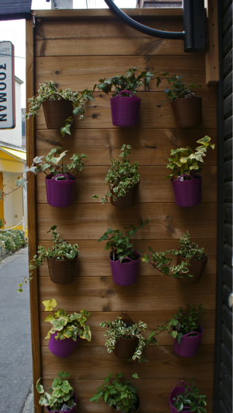 Vertical Gardens just minutes away from Meiji Dori (one of the longest streets in Tokyo)