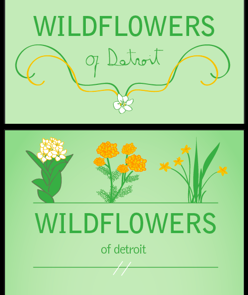 a couple initial sketches for the Wildflowers of Detroit project.