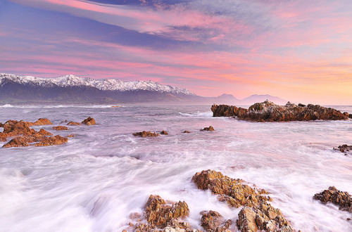 whereishouldgo:  Kaikoura, Canterbury, New Zealand (by anthonyko)
