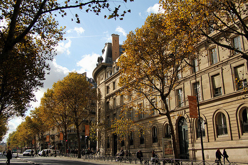 "a dreamguide:  ""Boulevard Saint-Michel, Paris by Meteorry, on Flickr"""