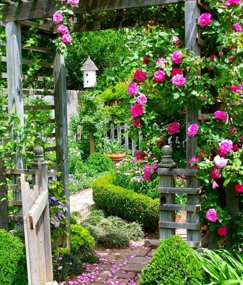 I want a garden like this when I have my own place :)