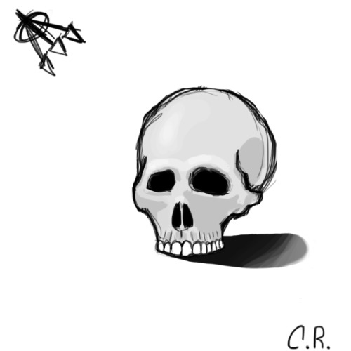 thedailydrawingchallenge:  Alright, the theme for this month (March) is skulls. I figured that it would be pretty useful since the skull is the framework for the head, so the better you are at drawing skulls the easier heads will be. Here is the first drawing. Right off the bat I can tell that I need more practice, especially around the cheek bones and eyes. Next time I will include the lower jaw as well. Also the shading is not the greatest and could definitely be more realistic. Well, I still have 23 more skulls to draw so hopefully I'll just keep getting better from here *fingers crossed*.  Todays daily drawing from my other blog (thedailydrawingchallenge). What do you think? Remember to follow for a new drawing every day!