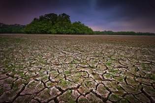 Can we solve global water scarcity? | Grist Texas' rivers and aquifers are among the most heavily depleted in the world. (Photo by Jeff Reid.) You're probably doing your part to conserve water, especially if you live in a drought-stricken area. But water is in short supply across the globe because of people's increasing demands for it — a huge problem for cities, agriculture, and industry that will only get worse with climate change.  Getting an accurate handle on what's causing the problem has been missing — until now. A new study in the journal PLoS ONE, coauthored by Nature Conservancy scientist Brian Richter, provides fresh insight into the factors behind water shortages in the world's most important river basins. The study provides the most comprehensive picture of the global water problem to date, looking at monthly rather than annual changes and digging into the actual causes of water depletion — agricultural, industrial, and domestic — in our ecosystems. While the findings aren't rosy — more than 2 billion people are affected by water shortages each year — coauthor Richter says there are still reasons to be hopeful … read on to the end of this Q&A with him to find out what they are.