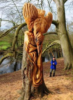 An anonymous artist has been creating stunning tree sculptures in Yorkshire, England. But who is it?
