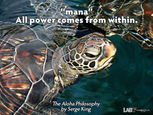 "The Aloha Philosophy by Serge King 6. ""mana"" All power comes from within. ( content remix series by LukasBryson @ LAB7media 
