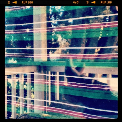 Reflections #marchphotoaday #window #day7 #sunshine (Taken with Instagram at The new house on Center St.)