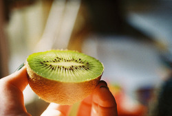 worldofvieta:  Kiwi's are like portable snacks; a healthy half is like a scoop.