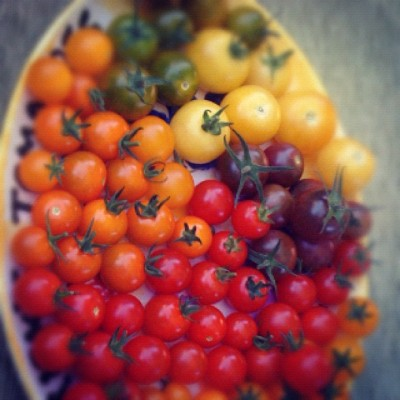 #food #delicious #red #xpro2  #summer #tomatoes (Taken with instagram)