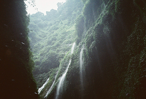 naturephilia:  Madakaripura Waterfall, East Java, Indonesia.