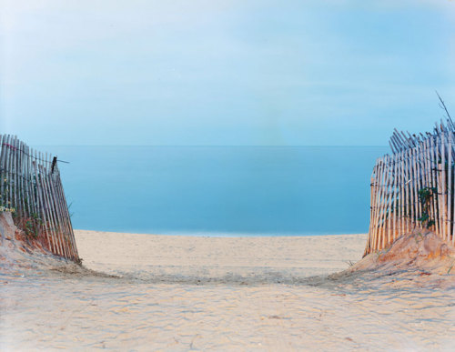 Wide open beaches and wild dunes, The Hamptons