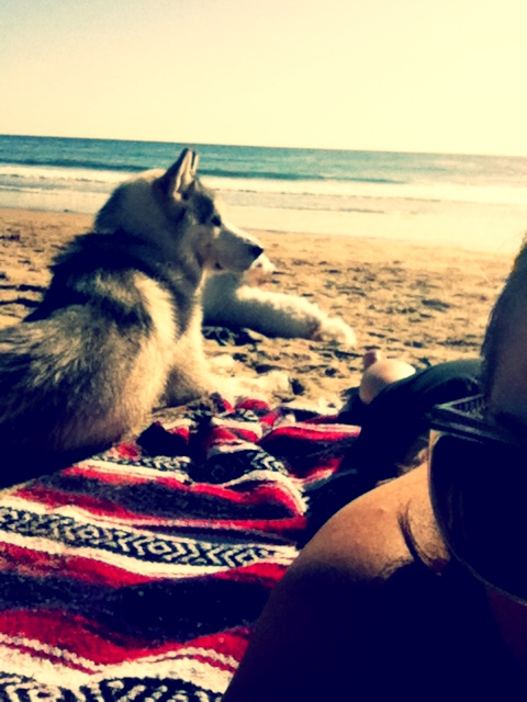 This is going to be me, my man, and our husky some day.