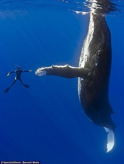 High five bro!