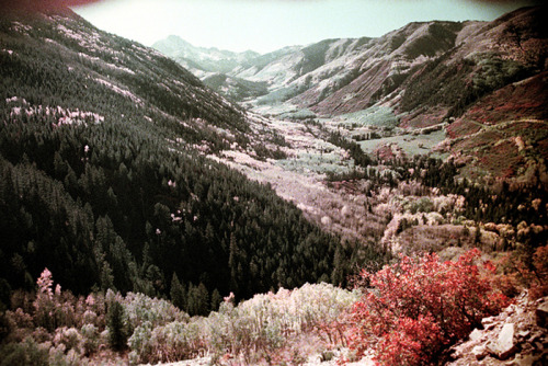 Near Aspen, Colorado. Fall 1977. Nick Dewolf photography.