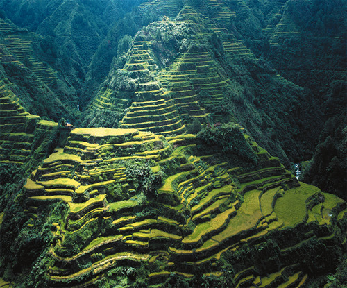 Banaue Rice Terraces in the Philippines This panoramic beauty was built over 2000 years ago by the Ifugao tribes with only primitive tools such as stones and woods.