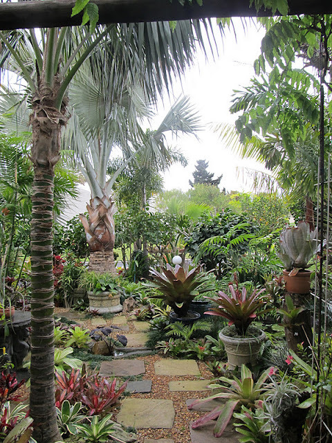 Cape Town, South Africa. Japie's Tropical Garden. A feast for the eyes, recorded by Veronica Clark.
