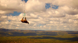 A black rhino is transported by helicopter in South Africa. This was all part of a relocation plan for black rhinos, meant to move the endangered species to less populated areas so that they have a better shot at survival. (Reuters / WWF)