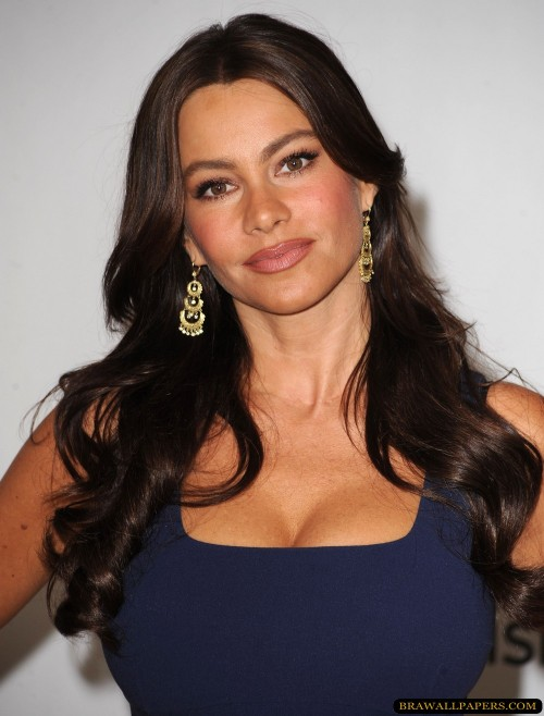 Sofia Vergara she is from Barranquilla.