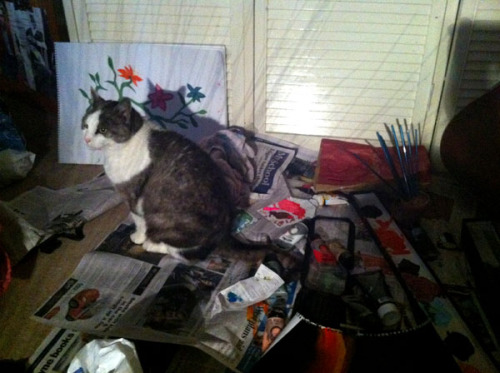 get away from my paint cat. you are not an artist. you can't even hold a brush. and no, i don't consider 'stepping in paint and running around the house' art.