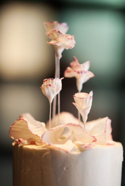 I adore how they did the flowers on this cake. (from http://ninecakes.com/)