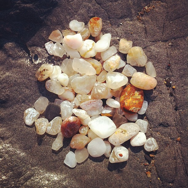 Agate hunting treasures.  #agate #pacificcoast (Taken with instagram)
