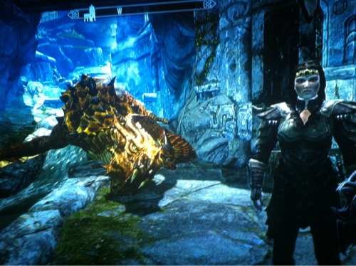A dragon I fought in the mountains disappeared before I could get to him, look where he went…