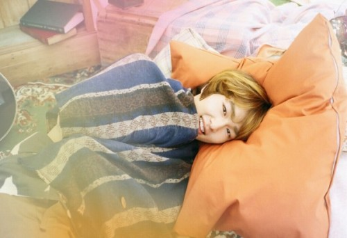 Onew's Teaser Photo #3.. Cuddly. ♥