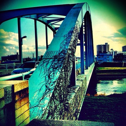 Bridge #instagram #iphoneography #iphonesia #photooftheday #instagood #iphone #ig #iphoneonly #jj #igers #gf_japan #instagramhub #instamood #bestoftheday #picoftheday #photography #igdaily #instadaily #webstagram #jj_forum #statigram #iphone4s #all_shots  #_wg #igerspescara #ipopyou #klyp #bridge (Instagramで撮影)