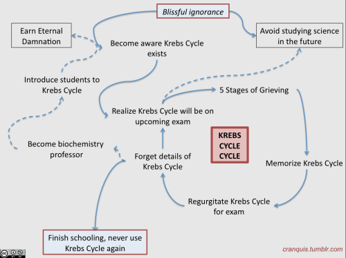 So true! cranquis:  The Krebs Cycle Cycle (Inspired by the very first CranquisMail ever.)