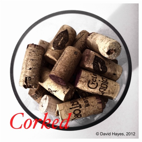 Corked. David Hayes, 2012. i365 project, 69/365. (6x6, ColorSplash, Iris)