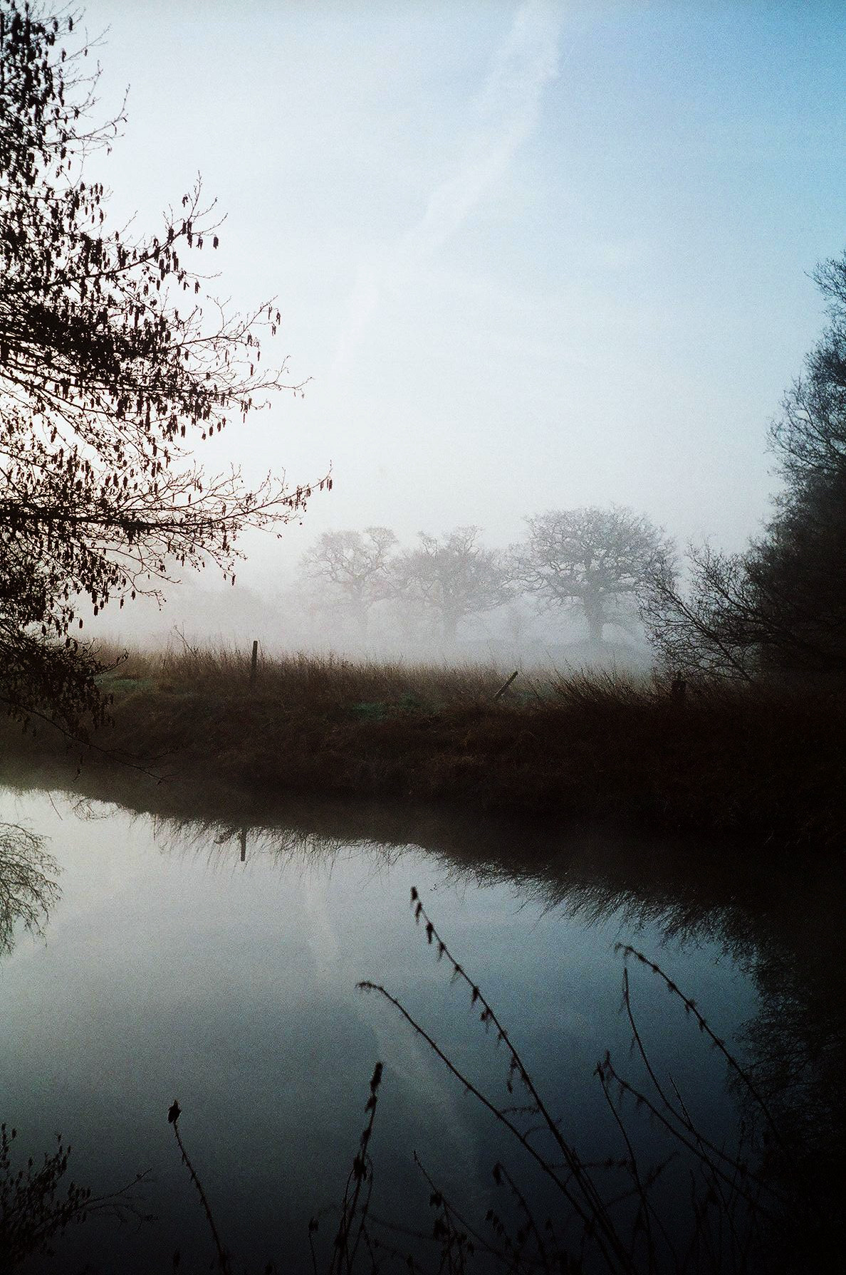 Esher, Surrey. Olympus Trip, expired film and a misty morning :)