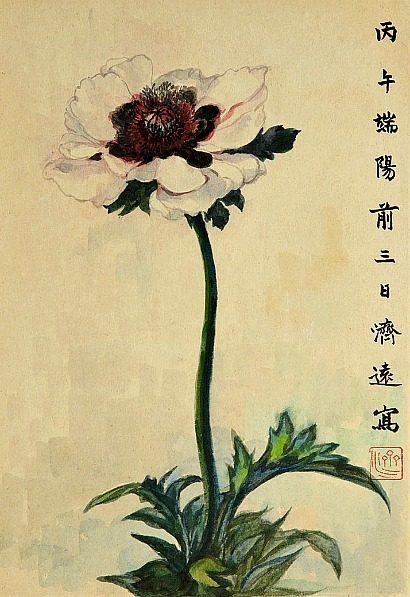 stilllifequickheart:  Wang Chi-Yuan Flower 20th century
