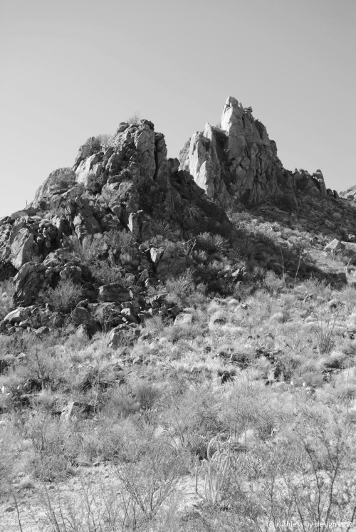 Balanced Rock Trail; Big Bend National Park, TX February 2012